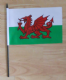 Wales Country Hand Flag - Medium.